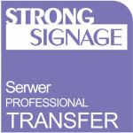 Transfer dla aplikacji Serwer Professional – 25GB